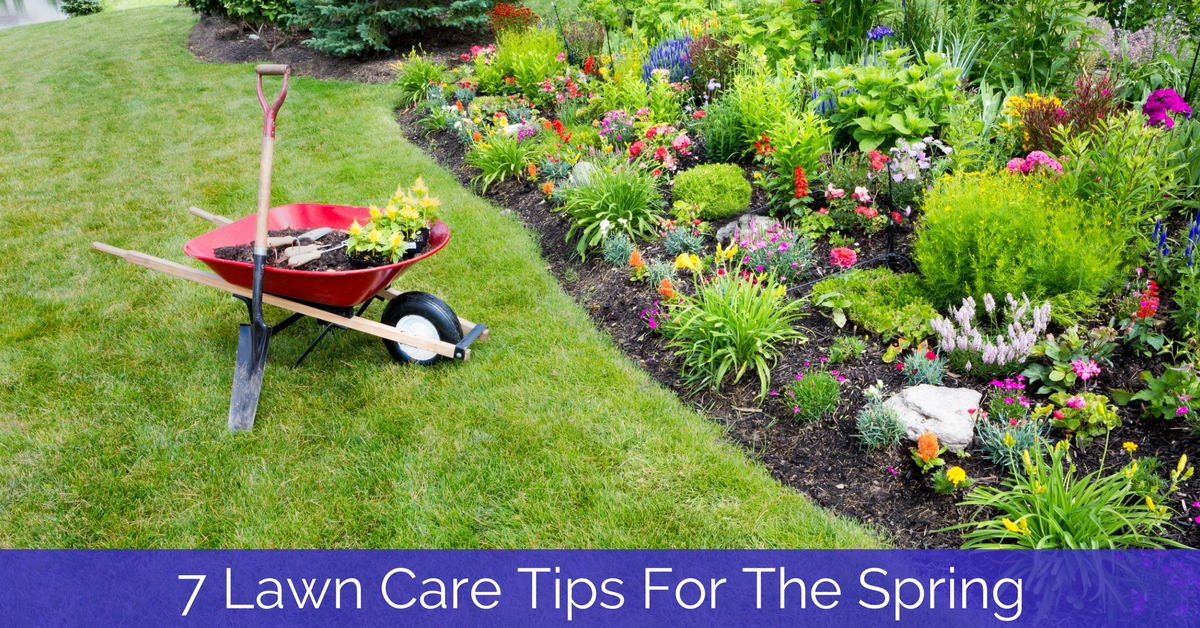 7 Lawn Care Tips For The Spring - Heads Up Irrigation SC